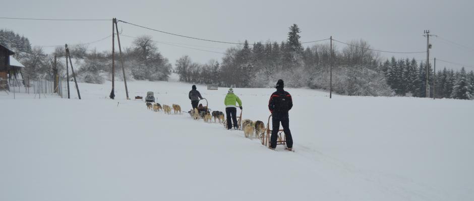 Retour de balade en traîneau à Belleherbe(Doubs-Franche Comté)