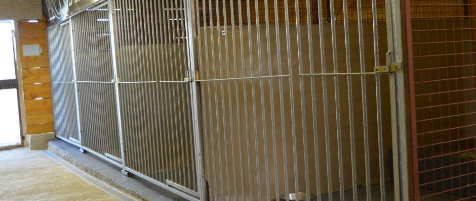 Pension canine - ferme sur la roche, pension canine située dans le Doubs entre Besançon Pontarlier et Montbéliard