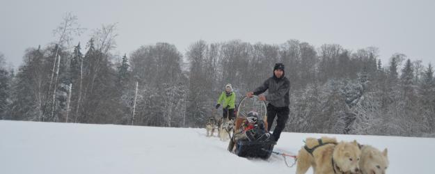 baptême en chiens de traineau Les Nordiques de la ferme sur la roche