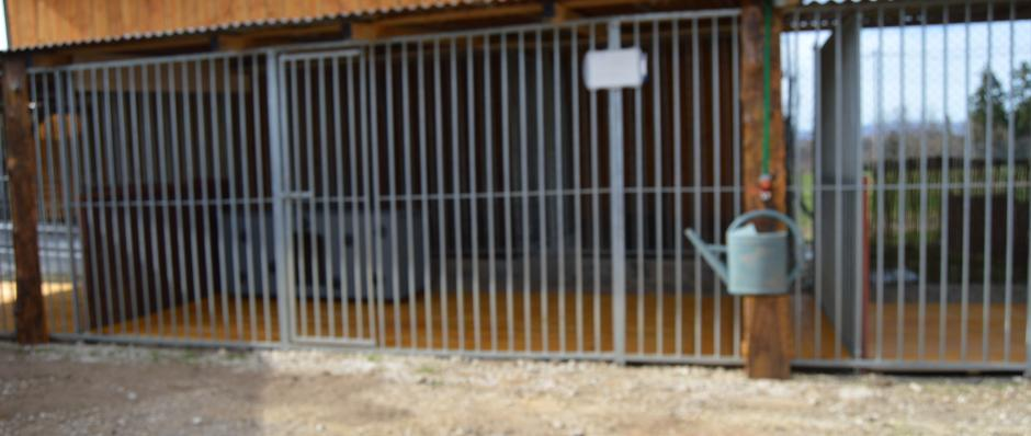 boxes extérieurs pension canine de la ferme sur la roche 25380 Belleherbe