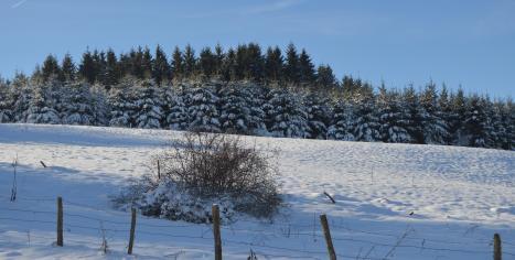 paysages enneigés Ferme sur la Roche 25380 Belleherbe